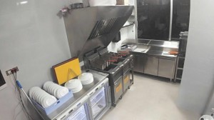 Kitchen fryers
